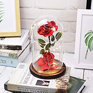 Sixpi Beauty and Beast Roses, Dream Flower Red Silk Rose with LED Light and Fallen Petals on a Glass Dome Wooden Base, Best for Weddings, Anniversaries, Best Gift for Her Big 3