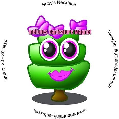Amazon.com: Del bebé collar Succulent terrario Llavero ...