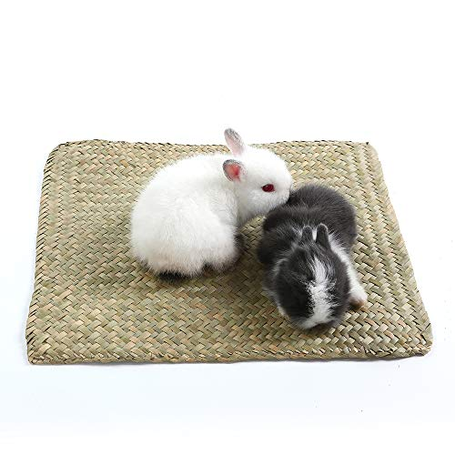 Niteangel 2-Pack of Soft Sea Grass Mats for Rabbit Bunny Guinea Pigs and Other Small Animals ()