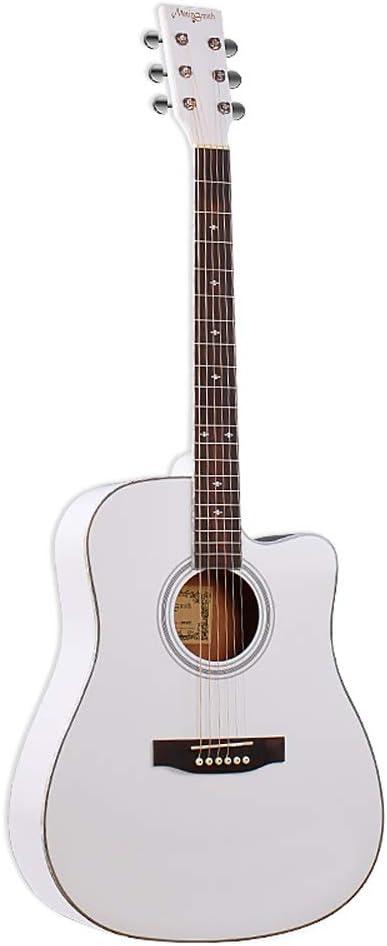 Miiliedy Prácticas para principiantes de 41 pulgadas Guitarra ...