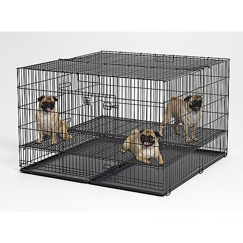 Floor Metals Midwest Grid (MidWest Puppy Playpen w/1