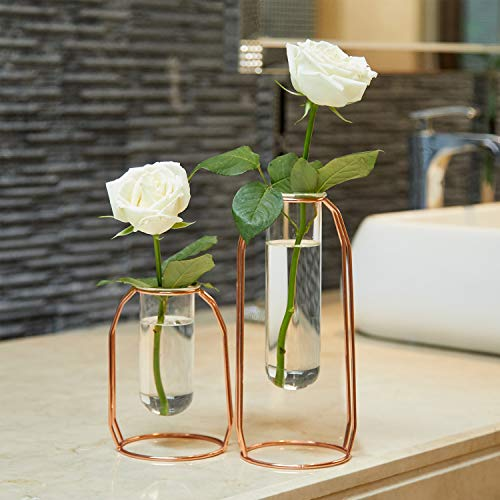 PuTwo Vases Set of 2 Metal Flower Vase Glass Vase Planter Terrariums Gold Vases Rose Gold Vase Plant Vase Glass Vases Cylinder Vase Vases for Decor Clear Vase Decorations for Living Room - Rose Gold (Bohemian Vase)