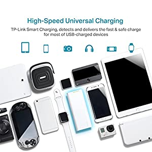TP-Link 15600mAh High Capacity Portable Battery Charger - LG Battery, 3A Fast Charge with Smart Charging, Dual Ports Power Bank For iPhone iPad Samsung Galaxy Kindle Fire GoPro Fitbits & more