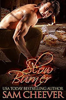 Slow Burner by [Cheever, Sam]