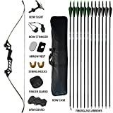adult starter bow and arrow set - D&Q Takedown Recurve Bow and Arrow for Adults Kit Package 30 35 40 45 50 55 60 lb Aluminum Alloy Riser Hunting Shooting Target Practice Competition Archery Longbow Set Right Hand(Black 50lbs)