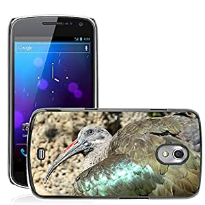 Hot Style Cell Phone PC Hard Case Cover // M00129993 Ibis Bird Fly Wings Feather // Samsung Galaxy Nexus GT-i9250 i9250