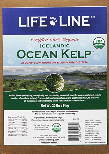 Life Line Organic Ocean Kelp Dog and Cat Supplement, 20-Pounds by Life Line