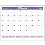 AT-A-GLANCE 2019 Monthly Wall Calendar, 15\
