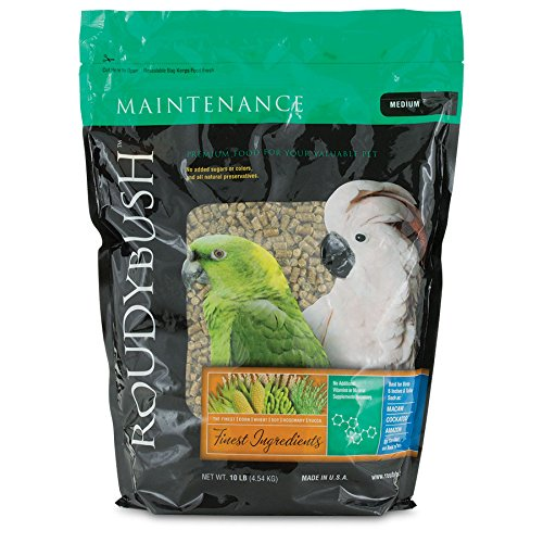 Roudybush Daily Maintenance Bird Food, Medium, 10-Pound