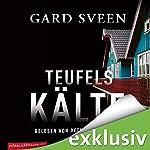 Teufelskälte (Ein Fall für Tommy Bergmann 2) | Gard Sveen