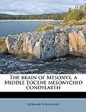 The Brain of Mesonyx, a Middle Eocene Mesonychid Condylarth, Leonard B. Radinsky, 1174662840