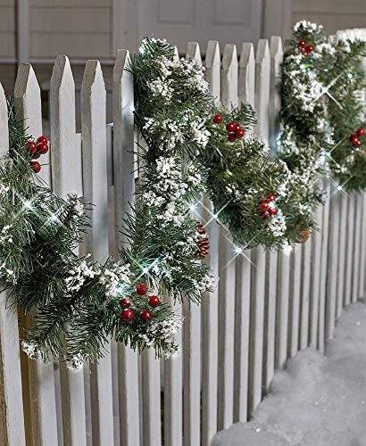 The Lakeside Collection 9-Ft. Lighted Garland]()