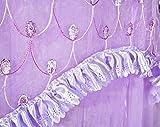 Sinotop Luxury Princess Bed Net Canopy Round Hoop