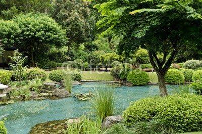 Brisbane, Jardín Botánico (55325007), Forex, 80 x 50 cm: Amazon.es: Jardín