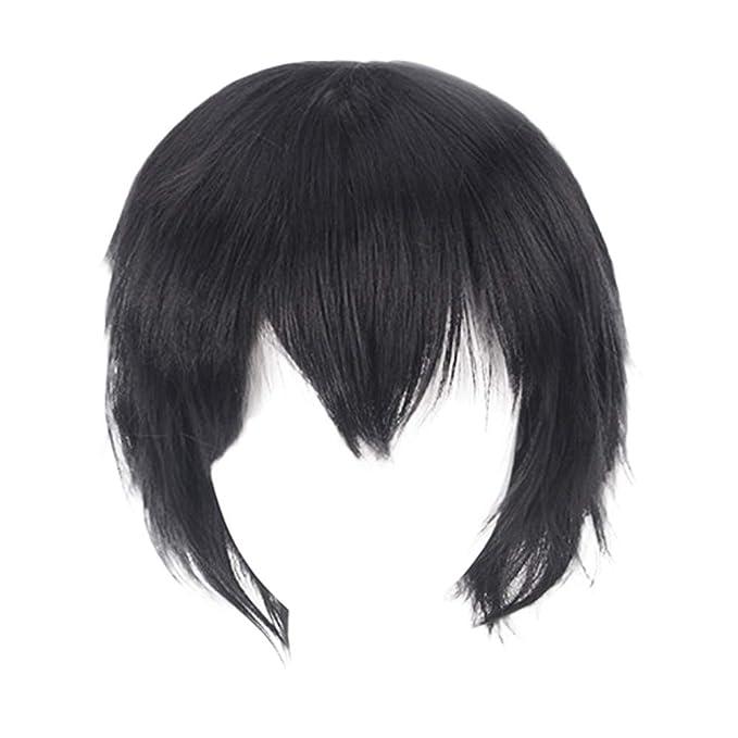 Amazon.com: Peluca de pelo corto y liso para disfraz, 13.8 ...