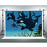 Whale,Background Vinyl Photo Backdrops Studio Props,10x20ft,Pod of Killer Whales Swim Along a Reef Looking for Fish Prey Ocean Picture Print