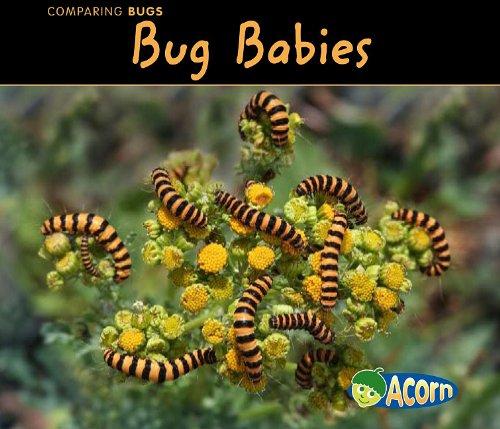 Bug Babies (Comparing Bugs) by Brand: Heinemann