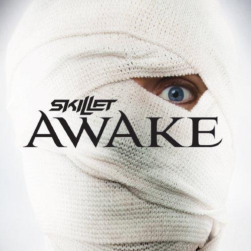 skillet - awake 2009