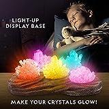 NATIONAL GEOGRAPHIC Mega Crystal Growing Lab - 8
