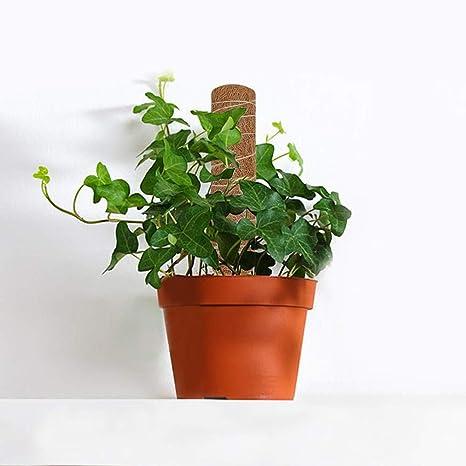 2PCS Estante para trepar plantas, Plant Climbing Coir Totem Pole ...