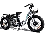electric adult tricycle - Emojo Caddy Electric Tricycle 24 Inch Fat Tire Electric Trike 3 Wheel Ebikes 48V 500W Electric Bike Electric Tricycle Lithium Battery Rear Basket Cargo (White)