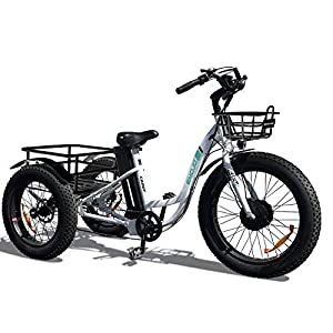 Best Electric Trikes