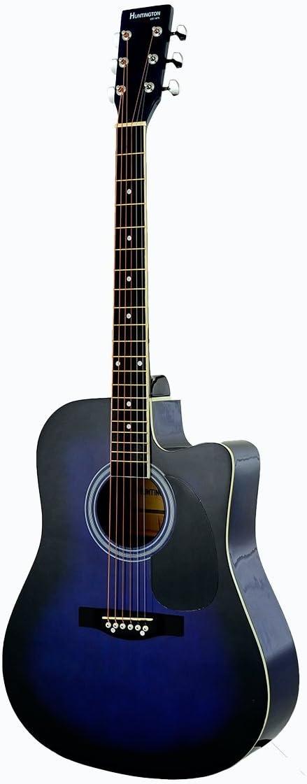/& DirectlyCheap PRO-A Series Teacher Approved TM Translucent Blue Medium Guitar Pick Full Size Blue Cutaway Acoustic Guitar