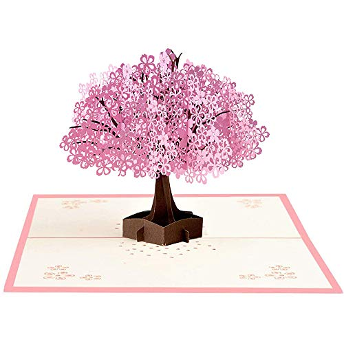 Auvanteo Romantic Cherry Blossom 3D Pop Up Card for Valentine's Day Anniversary Wedding Invitation (Double Cherry Blossom) ()