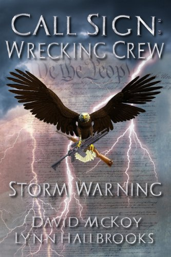 Call Sign: Wrecking Crew Storm Warning (Book 1 in the Call Sign: Wrecking Crew series) by [McKoy, David, Lynn Hallbrooks]