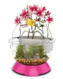 BioBubble Tunnel Kit Fish Bowl, Pink
