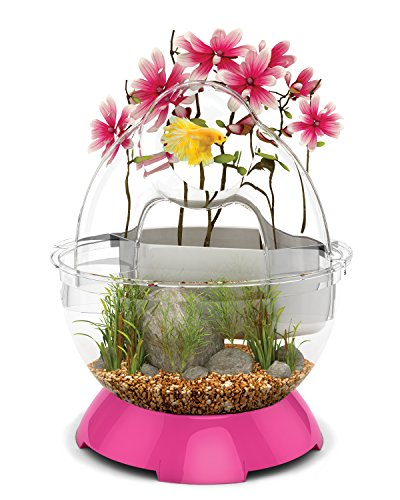 BioBubble Tunnel Kit Fish Bowl, Pink by Bio-Bubble