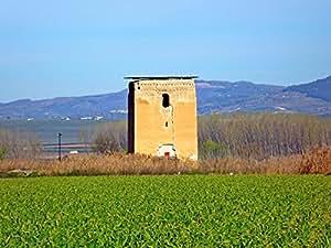 Vista Este de La Torre de Roma en La Vega de Chauchina VII. Vinilo Decorativo Autoadhesivo Pegatina de Pared en Vinilo (Vinilo Laminado Mate, A2 59,4x42 cm)