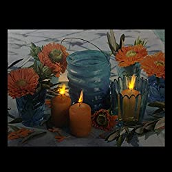 Northlight LED Lighted Flickering and Flowers Glas