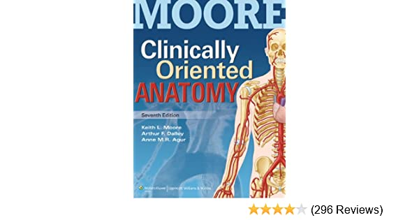 Essential clinical anatomy pdf moore
