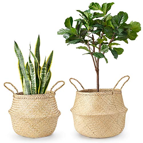 Mkono 2 Pcs Seagrass Plant Basket Indoor Woven Planter Holder Pot Cover Storage Organizer with Handles for Home Decor, M & L