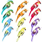 Fan-Ling Colorful Fake Parrots,Artificial Birds Model Outdoor Home Garden Lawn Tree Decor,Garden Yard Outdoor Indoor Art Crafts Decor,Cute Craft Decorative Ornaments for Home Table Decor (I:12PCS)
