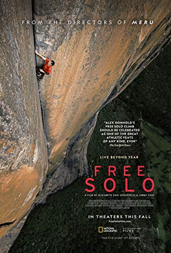 newhorizon Free Solo Movie Poster 17'' x 25'' NOT A DVD ()
