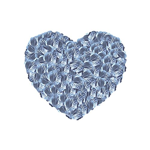Neo LOONS 1000 Pcs Artificial Silk Rose Petals Decoration Wedding Party Color Silver
