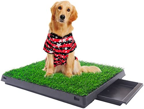 Indoor Puppy Potty Training Toilet product image