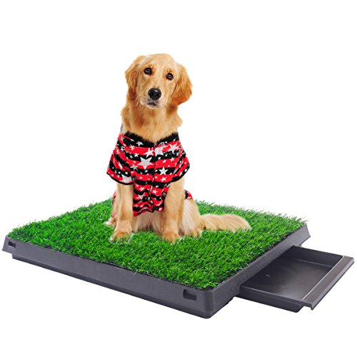 Indoor Puppy Dog Pet Potty W/Tray Training Pee Pad Mat Tray Grass House Toilet by Paradise Group