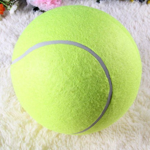 electronic ball launcher for dogs - 5