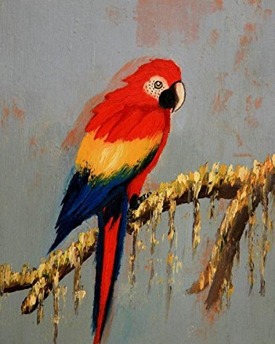 Oil Painting 'Colorful Parrot', 18 x 23 inch / 46 x 57 cm , on High Definition HD canvas prints is for Gifts And Basement, Game Room And Nursery Decoration, cheap large