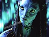 Avatar Neytiri ZOE Saldana 8x10 Auto Photo Reprint #2