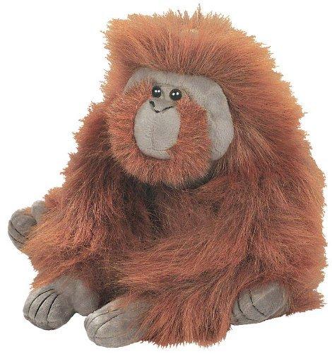 Male Orangutan Cuddlekin 12