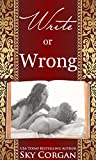 Write or Wrong (The Wrong or Write Duet Book 2)