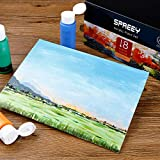 SPREEY Acrylic Paint Set of 18 Colors Large 18x59ml