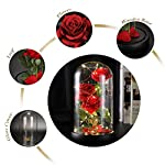 Beauty-and-The-Beast-Rose-Magic-Rose-Handmade-to-Create-The-Perfect-Silk-Rose-and-Glass-Flower-Rose-Long-Lasting-Flowers-Valentines-Mothers-Day-Birthday-Present-Christmas-Forever-Gifts