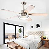 Andersonlight 48-Inch Stainless Steel Ceiling Fan with Dimmable LED Light (White/Warm/Yellow 3-Lights Transform), 5 Reversible Silver/Wood Blades, Reversible Mute Motor, Wireless Remote Control
