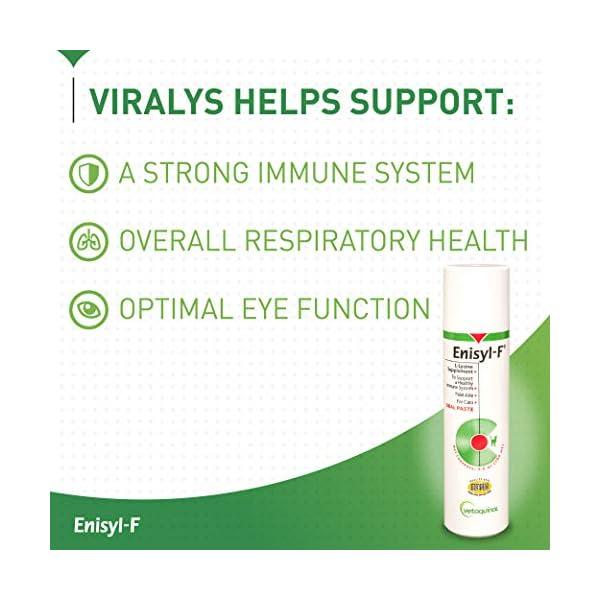 Vetoquinol Enisyl-F Oral Paste: L-Lysine Supplement for Cats - Tuna Flavor, 3.4oz (100mL) Pump 4