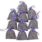 RakrisaSupplies Purple Bags Pack of 15 | Natural Deodorizer, Moth Repellent, Highest Fragrance Lavender Scent Sachets | LS-001